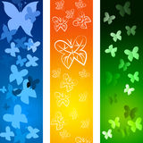 Butterflies Copyspace Indicates Blank Flying And Backdrop Royalty Free Stock Images