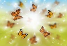 Butterflies 3D Stock Photography