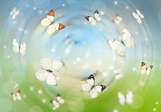 Butterflies 3D Royalty Free Stock Photo