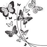 Butterflies design Stock Images