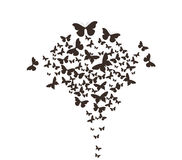Butterflies design Stock Image
