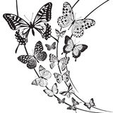 Butterflies design Stock Photos
