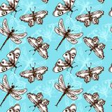Butterflies and dragonflies seamless pattern. Butterflies and dragonflies insects blue sketch seamless pattern vector illustration Royalty Free Stock Photography
