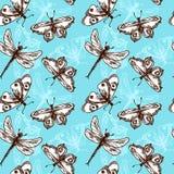 Butterflies and dragonflies seamless pattern. Butterflies and dragonflies insects blue sketch seamless pattern vector illustration stock illustration