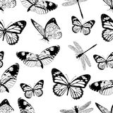 Butterflies and dragonflies seamless pattern, monochrome vector background, coloring book. Black and white various insects on a wh Royalty Free Stock Images
