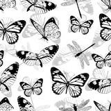 Butterflies and dragonflies seamless pattern, monochrome vector background, coloring book. Black and white various insects on a wh Stock Images