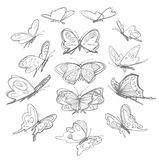 Butterflies drawing Stock Photography