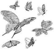 Butterflies drawing Stock Photos