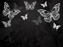 Butterflies drawn in chalk Royalty Free Stock Photography