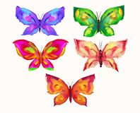 Butterflies with the effect of oil paints. A set of bright, hand-drawn butterflies with the effect of oil paints. Vector illustration vector illustration