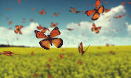 Butterflies. On a field of flowers. 3D graphics Royalty Free Stock Photography
