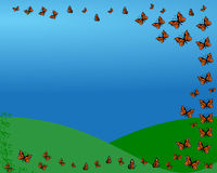 Butterfly Flight Stock Images