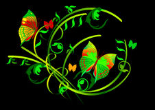 Butterflies and Floral Scrolls On Black Background stock illustration