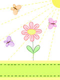 Butterflies and flower. A flower and butterflies under the sunshine Royalty Free Stock Image