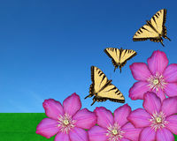 Butterflies and Flowers. Three butterflies with purple flowers and a field and sky Stock Image