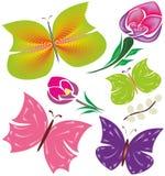 Butterflies, flowers - beautiful design elements vector illustration