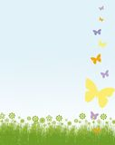 Butterflies and flowers frame Royalty Free Stock Photography