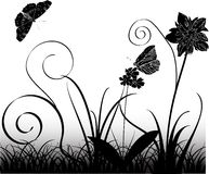 Butterflies, flowers and grass Stock Photo