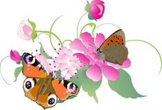 Butterflies on flowers illustration Royalty Free Stock Photos