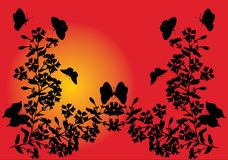 Butterflies and flowers on sunset background Royalty Free Stock Image