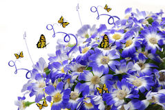 Butterflies and Flowers Royalty Free Stock Photography