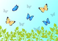 Butterflies that Fly Over Green Grass in Blue Sky. Beautiful bright small creatures. Gorgeous butterflies and fresh herbs cartoon vector illustration Royalty Free Stock Photo