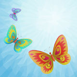 Butterflies Fly in the Sky, Low-Poly Stock Photos