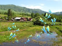 Butterflies fly in the village, swamp, pond, foto and illustration stock illustration