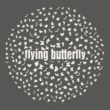 Butterflies flying in a circle scatter in Royalty Free Stock Photo