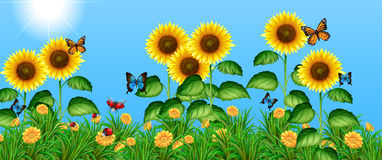Butterflies flying in the sunflower field. Illustration Royalty Free Stock Photography