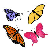 Butterflies-four Stock Image