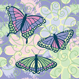 Butterflies Are Free Royalty Free Stock Image