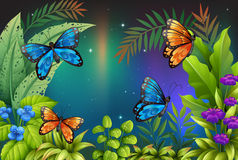 Butterflies in the garden Royalty Free Stock Images