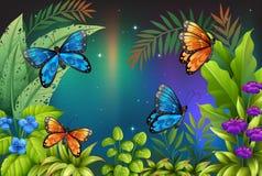 Butterflies in the garden. Illustration of butterflies in the garden Royalty Free Stock Images