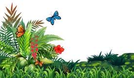 Butterflies and garden Stock Images