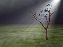 Butterflies in Godrays Stock Photo
