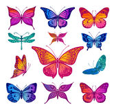 Butterflies graphic illustration Stock Photo