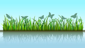 Butterflies in grass Royalty Free Stock Photo