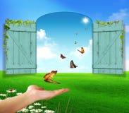 Butterflies on green grass. Hand and butterflies on green grass Royalty Free Stock Photos