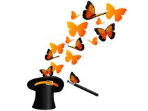 Butterflies in hat Stock Photography