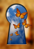 Butterflies and keyhole. Butterflies flying out of a keyhole with blue cloudy sky inside it Royalty Free Stock Photos