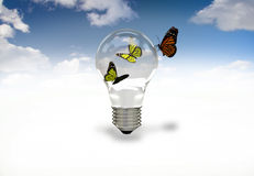 Butterflies and light bulb  Royalty Free Stock Image