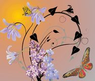 Butterflies and lilac flowers at sunset Stock Photos