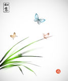 Butterflies and little snail on leaves of grass h Royalty Free Stock Images