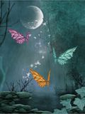 Butterflies in moonlight Royalty Free Stock Photography