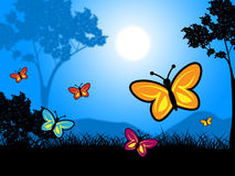 Butterflies Nature Indicates Outdoors Environment And Natural Royalty Free Stock Photo