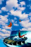 Butterflies with nautilus shell Royalty Free Stock Photo