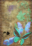 Butterflies on old vellum. With spot and rift Stock Photo