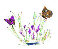 Free Butterflies On Flowers Stock Images - 9805314