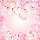 Butterflies and orchids flowers background Stock Image